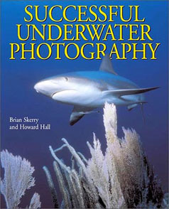 success-underwater-photog