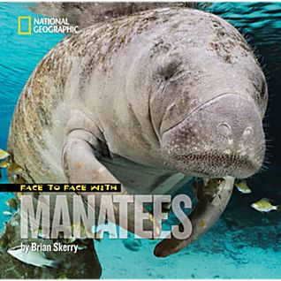 Face to face with manatees | Brian Skerry Photography